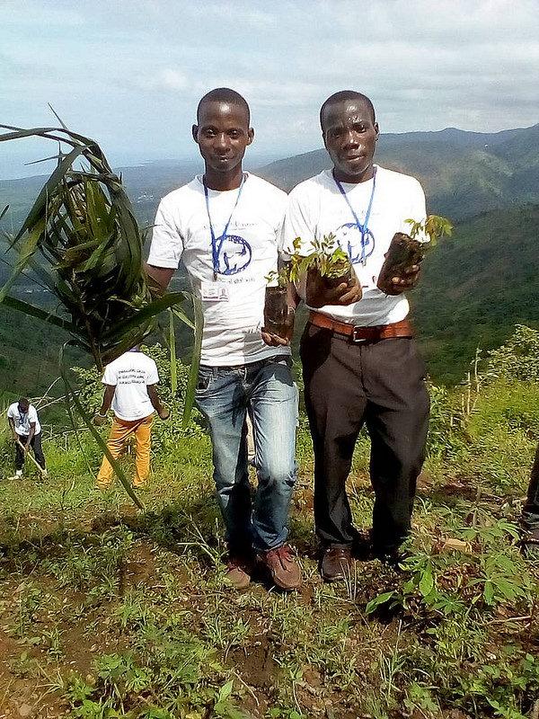 Burundi reforestation