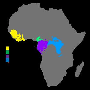 Chimpanzee distribution