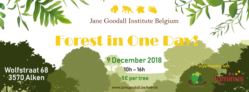 Forest in One Day Jane Goodall banner