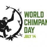world chimpanzee day
