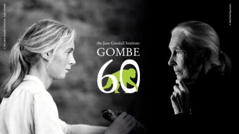Gombe 60 years