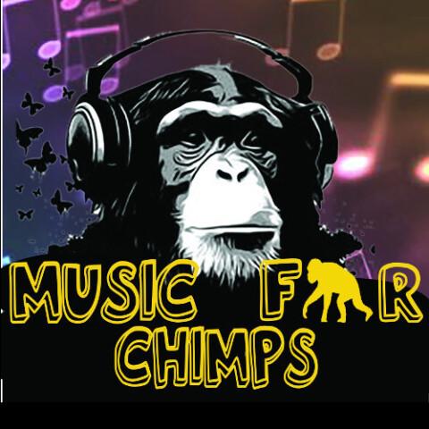 Music4chimps