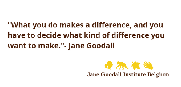 board members image jane goodall