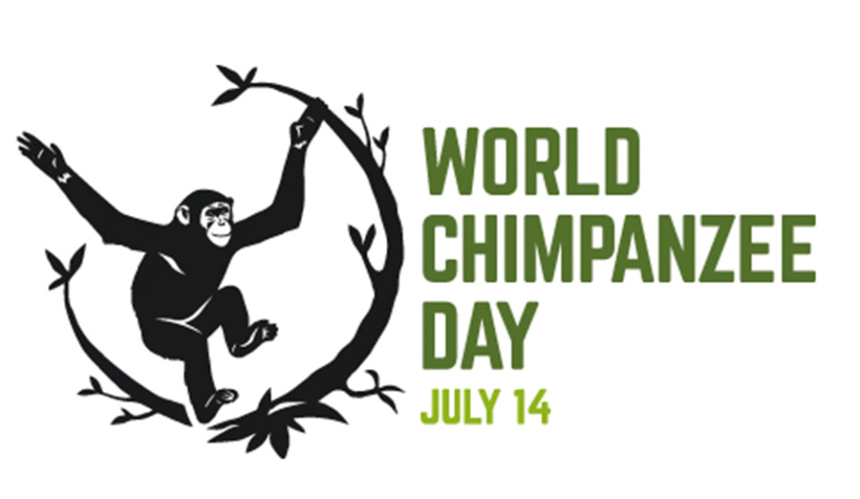 world-chimp-day-header