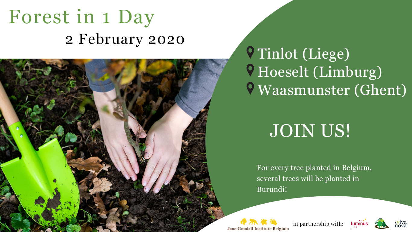 Forest in 1 Day jane goodall institute belgium 2020