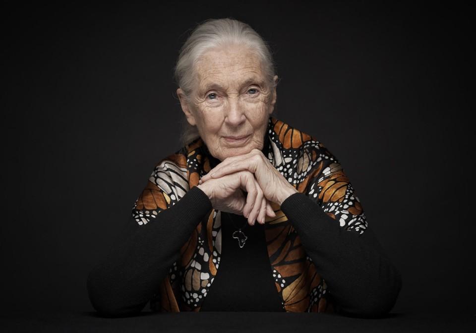 Jane-Goodall-hasselt-university-award